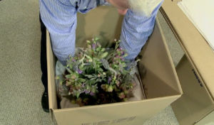 Arpin of RI packer in a dining room carefully placing a delicate flower arrangement into the carton
