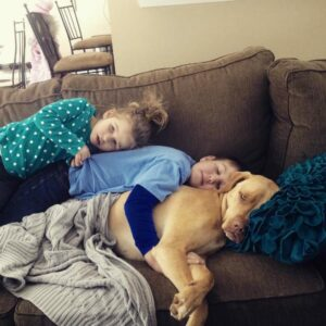 A dog and two children snuggling in throw pillow on a sofa.
